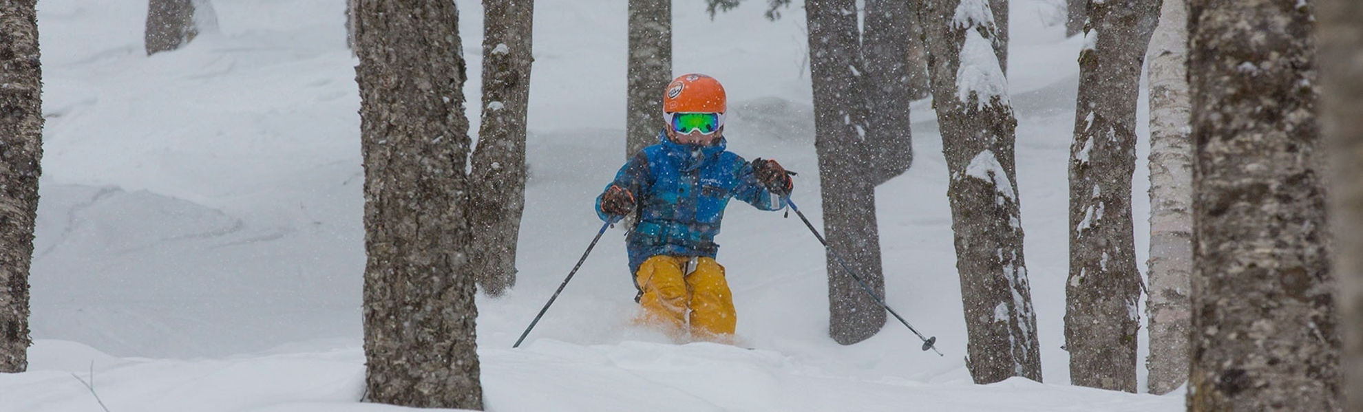 Picture of Community Sunday River Pass - 20/21
